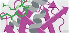 微小管研究に有用な化合物
