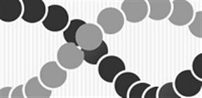 DNA メチル化解析キット