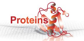 Protein ポータル