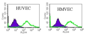 Flow Cytometry - CD31 antibody [WM59] (ab218)