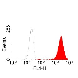 Flow Cytometry / FACS - EGFR antibody [ICR10] (ab231)