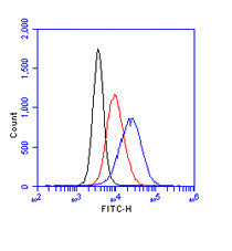 Flow Cytometry - gamma H2A.X (phospho S139) antibody (ab11174)