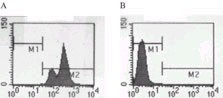 Flow Cytometry - TLR7 antibody (ab13732)