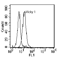 Flow Cytometry / FACS - BCMA antibody [Vicky-1] (ab17323)