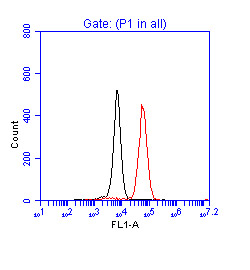 Flow Cytometry - p53 antibody (ab17990)