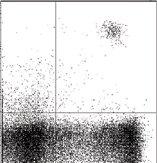- IL3RA antibody [6H6] (ab21562)