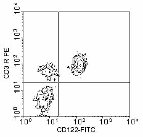 Flow Cytometry - CD3 epsilon antibody [C363.29B] (Phycoerythrin) (ab25380)