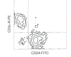 Flow Cytometry - CD24 antibody [91] (FITC) (ab25657)
