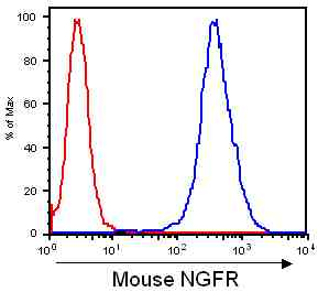 Flow Cytometry / FACS - p75 NGF Receptor antibody [2E3] (ab27007)