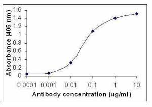 ELISA - IL11 antibody (ab36626)