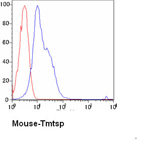 Flow Cytometry / FACS - THSD1 antibody (ab38239)