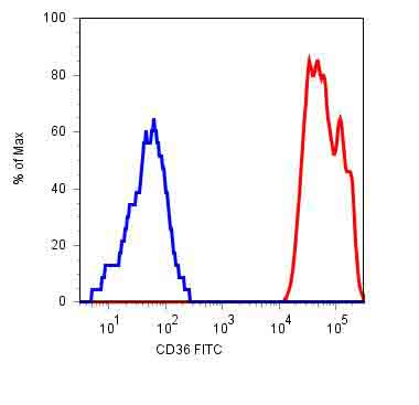 Flow Cytometry - CD36 antibody [TR9] (FITC) (ab39022)