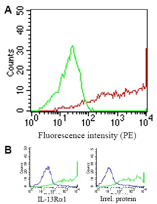 Flow Cytometry / FACS - IL13 Receptor antibody [GM1E7] (ab39418)