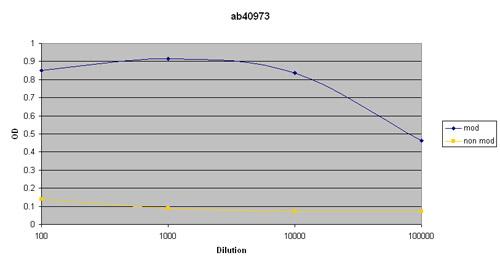 ELISA - KMT2C / MLL3 (acetyl K1869) antibody (ab40973)
