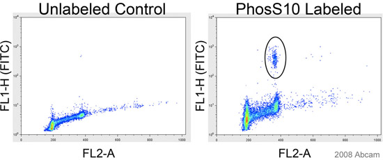 Flow Cytometry - Histone H3 (phospho S10) antibody (ab47297)
