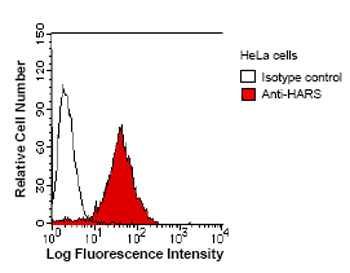 Flow Cytometry - HARS antibody [HARSA6] (ab50835)