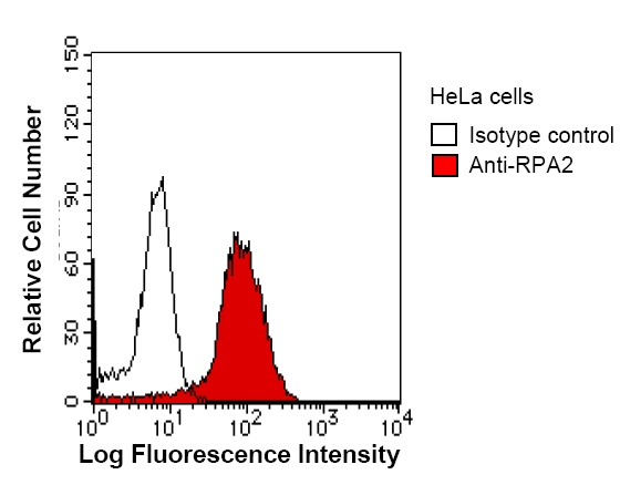 Flow Cytometry - RPA32/RPA2 antibody [2927C5] (ab51499)