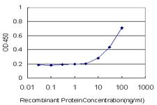 ELISA - BRMS1 antibody (ab57082)