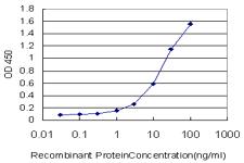 ELISA - SART2 antibody (ab57131)