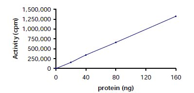 Functional Studies - Lck protein (Active) (ab60305)