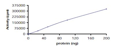 Functional Studies - ZAP70 protein (Tagged) (ab60963)