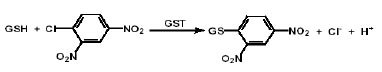 Functional Studies - GST Activity Assay Kit (Colorimetric) (ab65326)