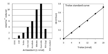 Functional Studies - Total Antioxidant Capacity Assay Kit (ab65329)
