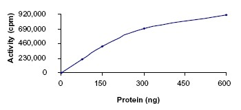 Functional Studies - Insulin Receptor R protein (Active) (ab69988)