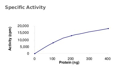 Functional Studies - MUSK protein (Active) (ab71693)