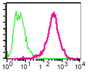 Flow Cytometry - AP2 gamma antibody [EP2693Y] (ab75992)