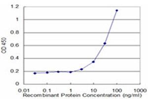 Sandwich ELISA - LCN1 antibody (ab76611)