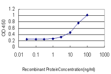 Sandwich ELISA - PAX7 antibody (ab77180)