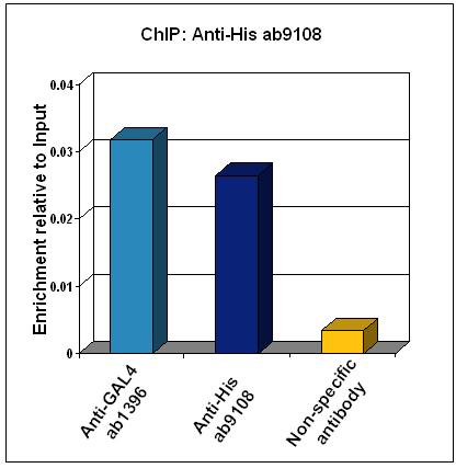 ChIP - 6X His tag antibody - ChIP Grade (ab9108)