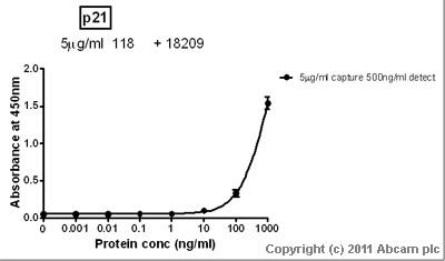 Sandwich ELISA - p21 antibody [AC8.3] (ab118)
