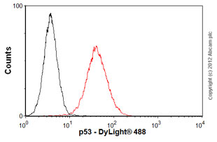 Flow Cytometry - Anti-p53 antibody [PAb 1801] (ab28)