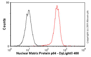 Flow Cytometry - Nuclear Matrix Protein p84 antibody [5E10] - Nuclear Marker (ab487)