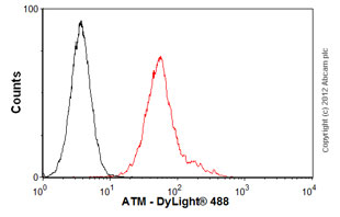 Flow Cytometry-Anti-ATM antibody [2C1 (1A1)](ab78)