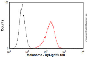 Flow Cytometry-Anti-Melanoma antibody [HMB45](ab787)