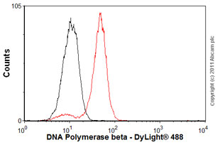 Flow Cytometry-Anti-DNA Polymerase beta antibody [61](ab1831)