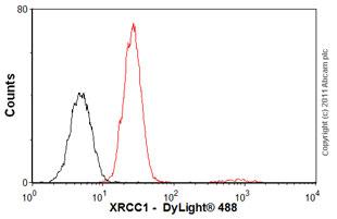 Flow Cytometry - Anti-XRCC1 antibody [33-2-5] (ab1838)