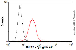 Flow Cytometry-Anti-Cdc27 antibody [AF3.1](ab10538)