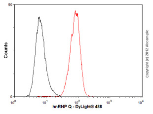 Flow Cytometry - Anti-hnRNP Q antibody [I8E4] (ab10687)