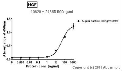 Sandwich ELISA - HGF antibody [EGH2 4C12.1] (ab10829)