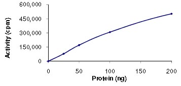 Functional Studies - Yes1 protein (ab101504)