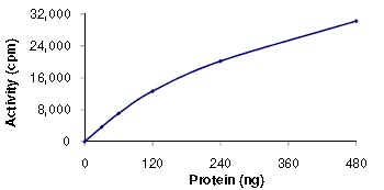 Functional Studies - ICK protein (ab101774)