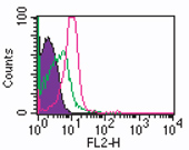 Flow Cytometry - ROR gamma antibody [4G419] (Phycoerythrin) (ab104950)