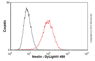 Flow Cytometry-Anti-Nestin antibody [SP103](ab105389)