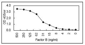 Sandwich ELISA - Factor B antibody [KT24] (HRP) (ab106687)