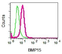 Flow Cytometry - BMP15 antibody [EPR5137] (ab108413)