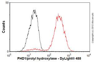 Flow Cytometry-Anti-PHD1/prolyl hydroxylase antibody [EPR2](ab108980)